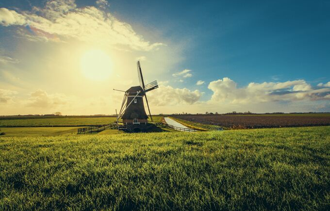 Working In The Netherlands: An Expat's Guide