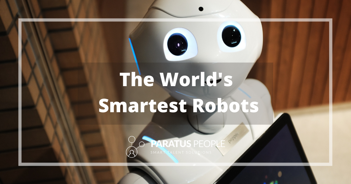 Will Robots Be The Companions Of The Future?